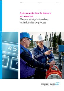 Tailor-made field instrumentation Measurement - ENDRESS+HAUSER SAS