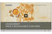 Cavacurmin : Highly Bioavailable  and Water Dispersible Curcumin