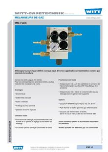 GAS MIXING SYSTEMS - WITT FRANCE SARL